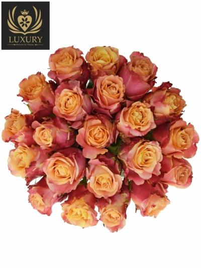 Kytice 21 luxusních růží 3D 50cm