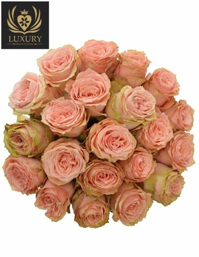Kytice 21 luxusních růží KAWA+