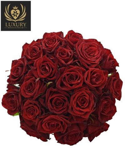 Kytice 21 luxusních růží TESTAROSSA 80cm