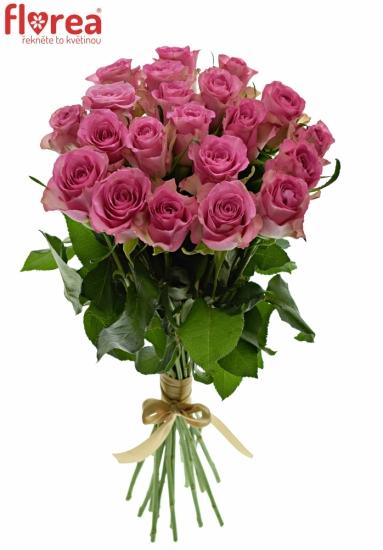 Kytice 21 malinových růží ROYAL JEWEL 50cm