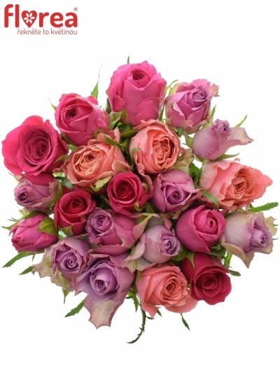 Kytice 21 míchaných růží ABERA 40cm