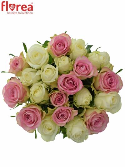 Kytice 15 míchaných růží AGAPA 40cm