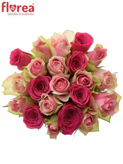 Kytice 21 míchaných růží ALHIVIA 40cm