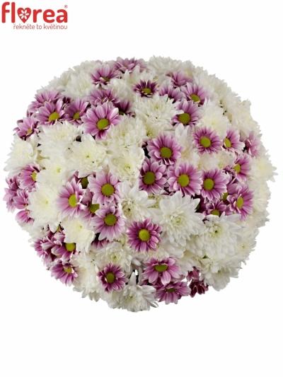 Kytice 21 míchaných chryzantém ADONA