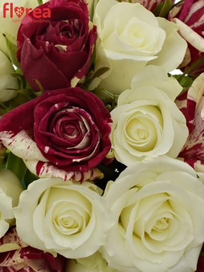 Kytice 21 míchaných růží HARLESPEN