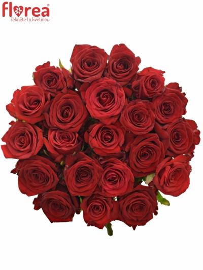 Kytice 21 míchaných růží JOANNA 70cm
