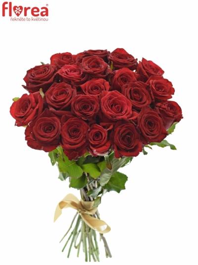 Kytice 21 míchaných růží JOANNA 55cm