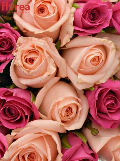 Kytice 21 míchaných růží PINACHE
