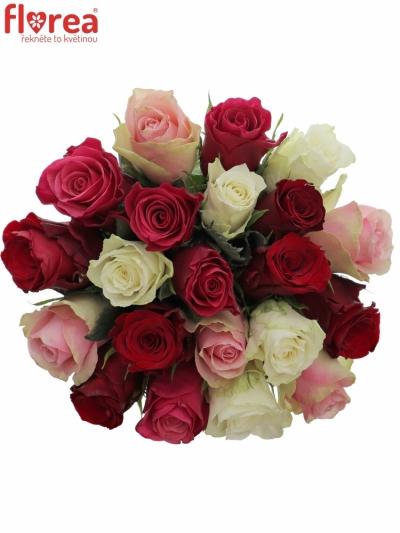 Kytice 21 míchaných růží RADWAN 50cm