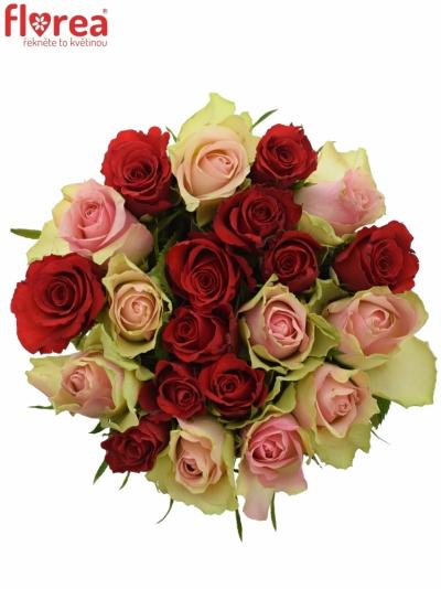 Kytice 21 míchaných růží ROSEBELLINE 50cm