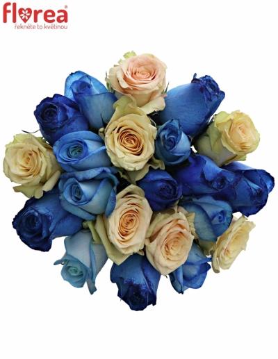 Kytice 21 míchaných růží SKYLA 50cm