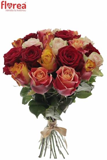 Kytice 21 míchaých růží PITTHEUS 50cm