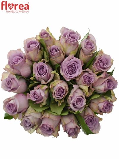 Kytice 21 modrofialových růží DANCING CLOUDS! 40cm