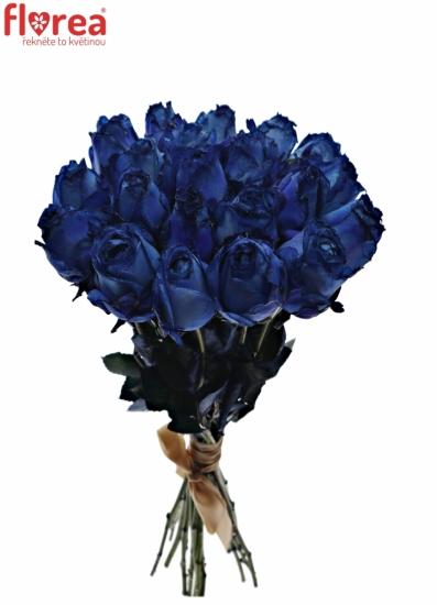 Kytice 21 modrých růží BLUE QUEEN OF AFRICA