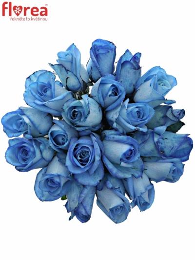 Kytice 21 modrých růží LIGHT BLUE SNOWSTORM