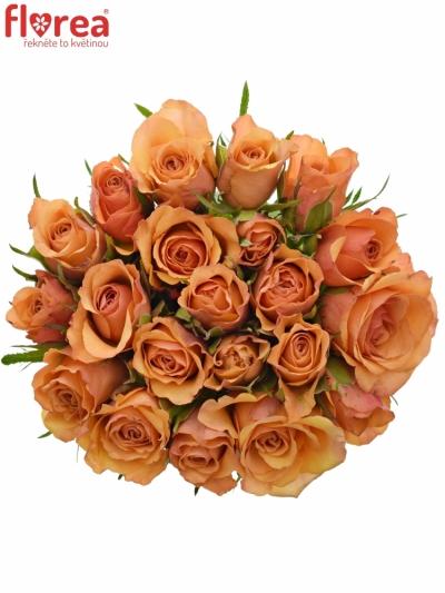 Kytice 21 oranžových růží JULIA 40cm
