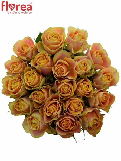 Kytice 21 oranžových růží MARACUJA 40cm
