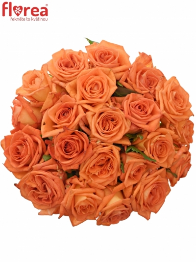 Kytice 21 oranžových růží NARANGA