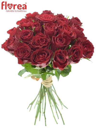 Kytice 21 rudých růží MADAM RED 35cm