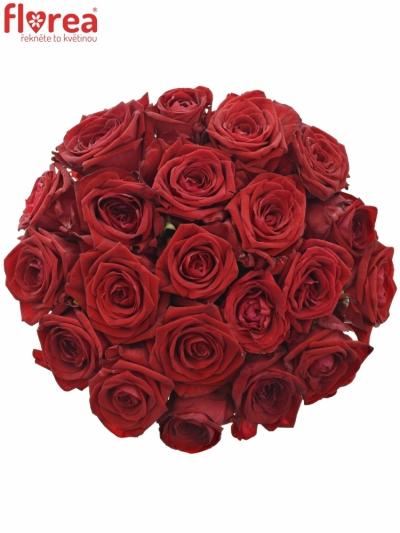 Kytice 21 rudých růží RED NAOMI! 30cm