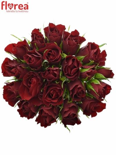 Kytice 21 rudých růží RED TIFFANY 40cm