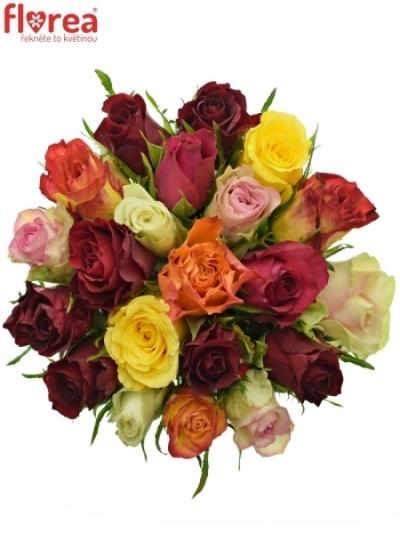 Kytice 21 růží MIX 40cm