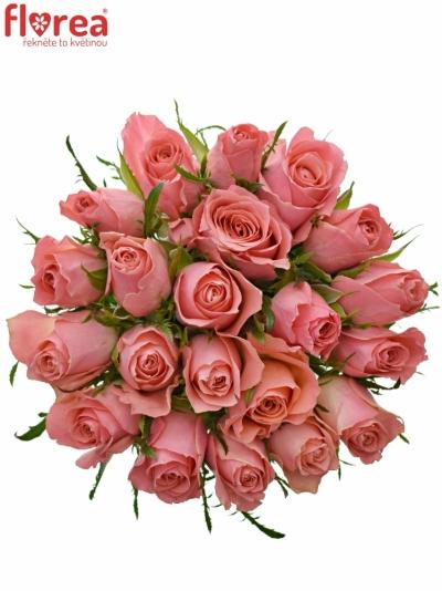 Kytice 21 růžových růží ACE PINK 50cm