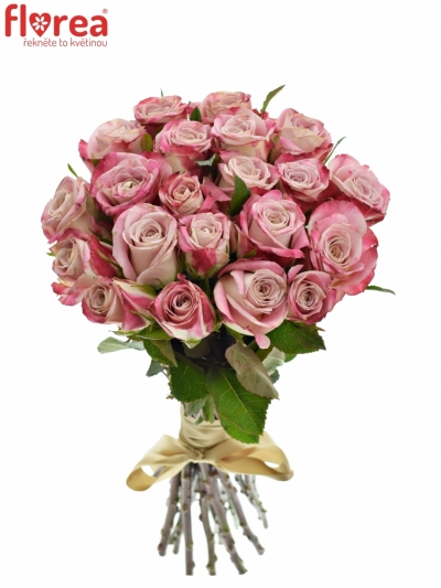 Kytice 21 růžových růží CLASSY ALISON