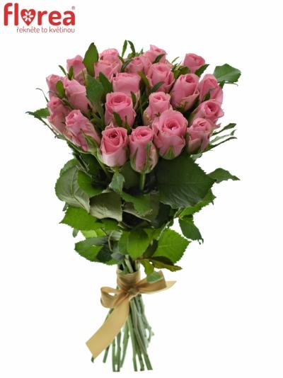 Kytice 21 růžových růží ELIZA 50cm