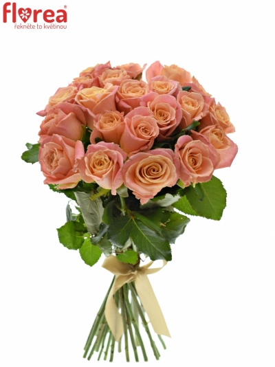 Kytice 21 růžových růží MISS PIGGY 60cm