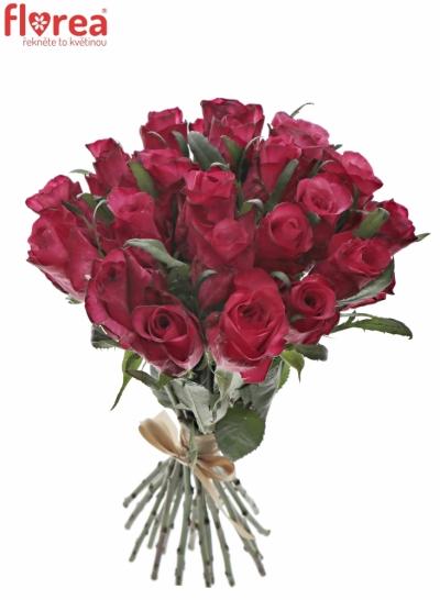 Kytice 21 růžových růží NATURES WILD
