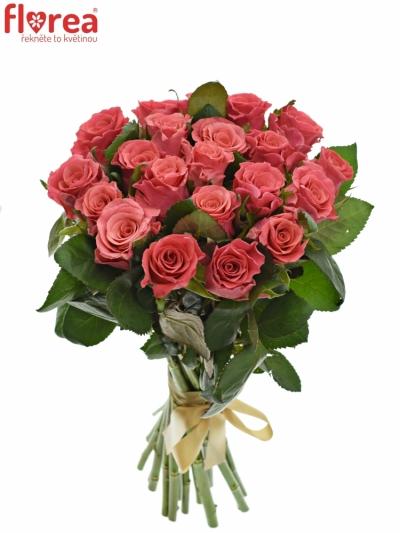 Kytice 21 růžových růží PINK TACAZZI
