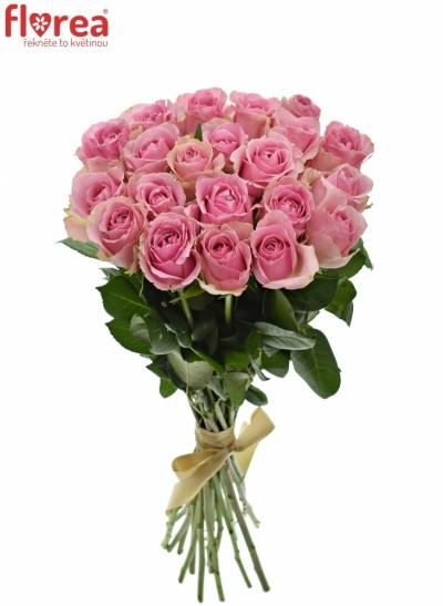 Kytice 21 růžových růží WHAM 50cm