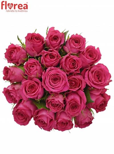 Kytice 21 růžových růží WINK 60 cm