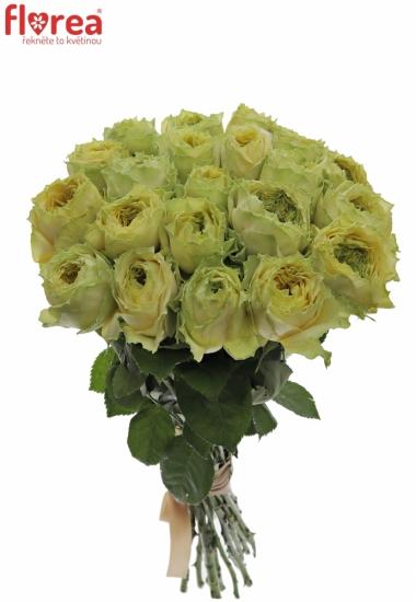 Kytice 21 zelených růží GRASSHOOPER
