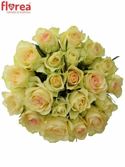 Kytice 21 zelených růží KIWI 60cm