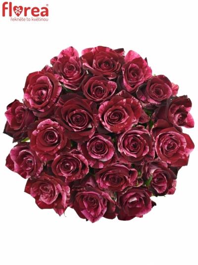 Kytice 21 žíhaných růží RED STORM