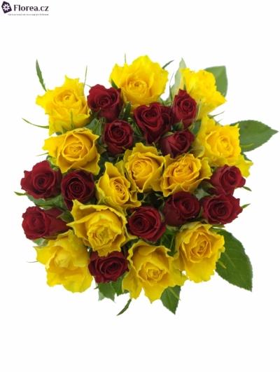 Kytice 25 míchaných růží ANATOLA 50cm