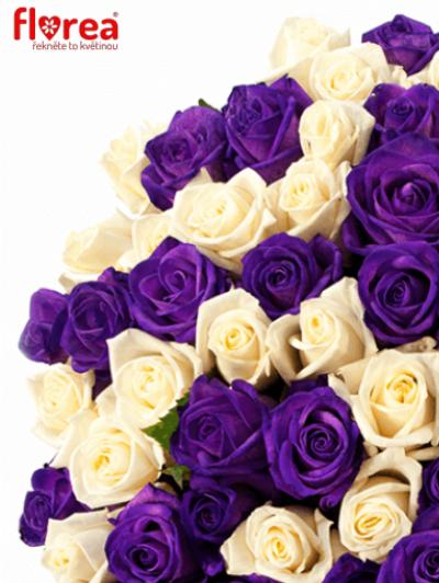 Kytice 25 barvených růží AUGUSTINA