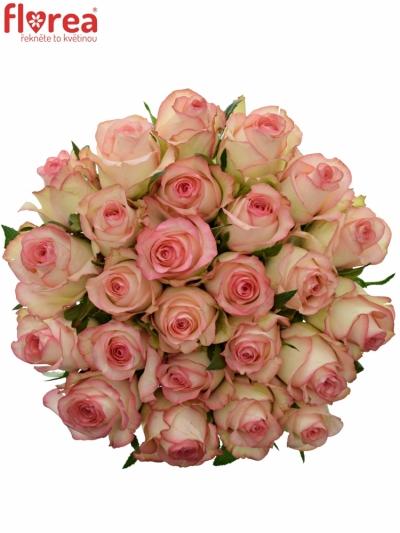 Kytice 25 bílorůžových růží JUMILIA 50cm