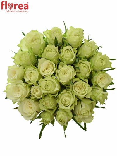Kytice 25 bílých růží MURU 40 cm
