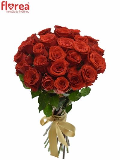 Kytice 25 červených růží BRIGHT TORCH