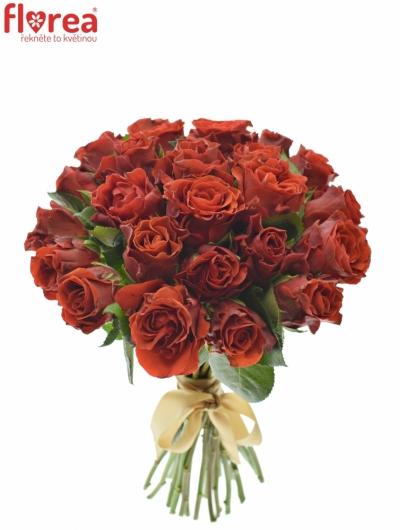 Kytice 25 červených růží EL TORO 30cm