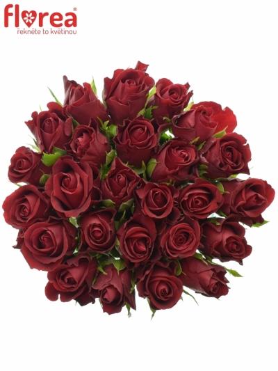 Kytice 25 červených růží FURIOSA 50cm