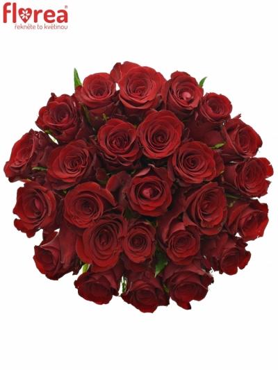 Kytice 25 červených růží MILLION REASONS