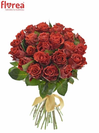 Kytice 25 červených růží RED CORVETTE 60cm