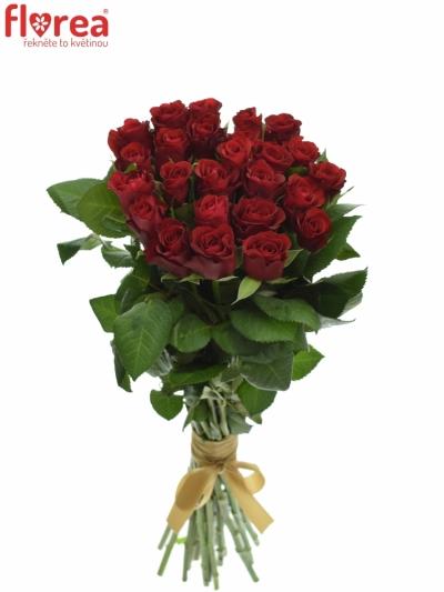 Kytice 25 červených růží RED RIBBON 40cm