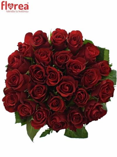 Kytice 25 červených růží RED RIBBON 50cm