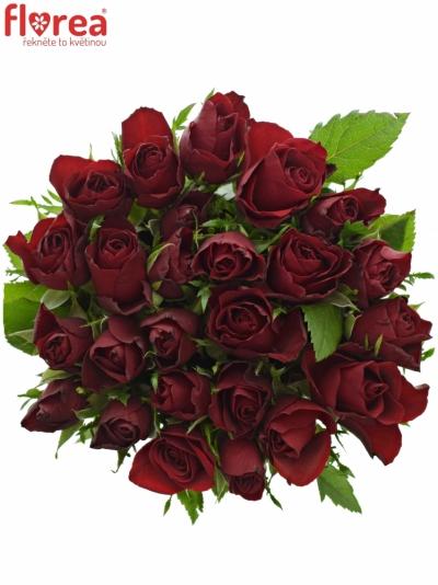 Kytice 25 červených růží RHYTHM 50cm