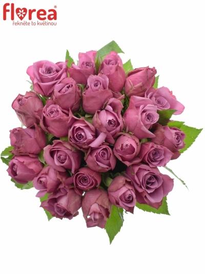Kytice 25 fialových růží NEW ORLEANS 40cm